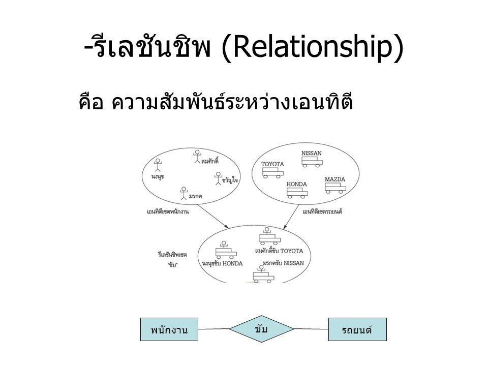 -รีเลชันชิพ (Relationship)