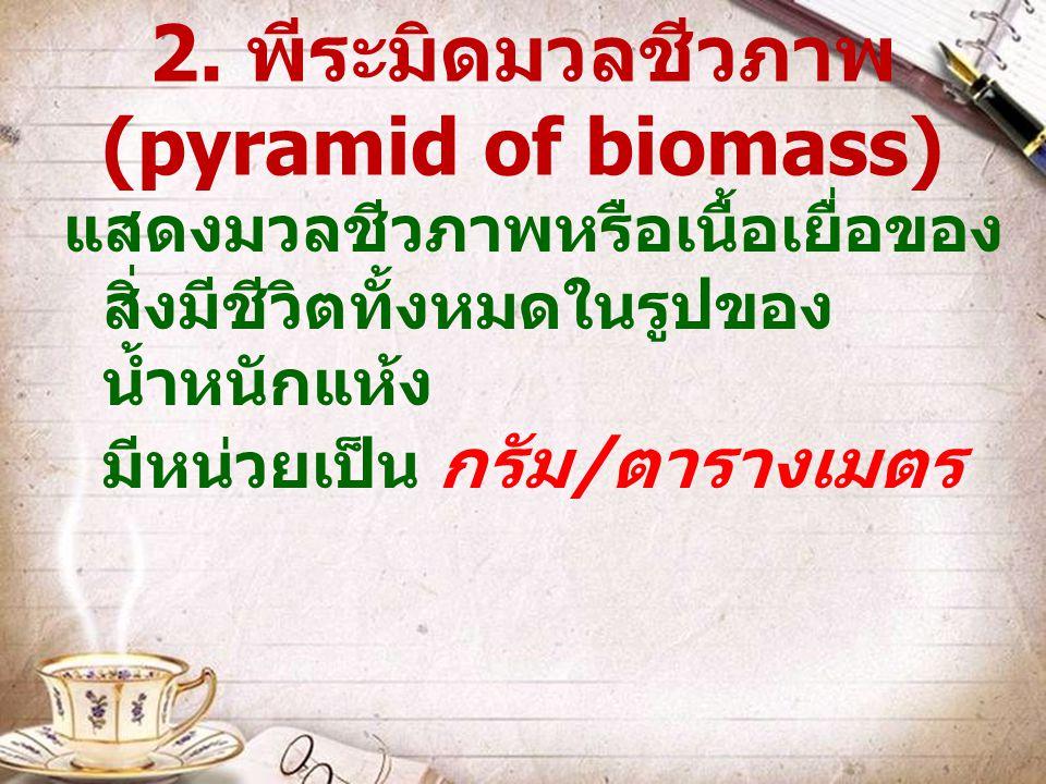 2. พีระมิดมวลชีวภาพ (pyramid of biomass)