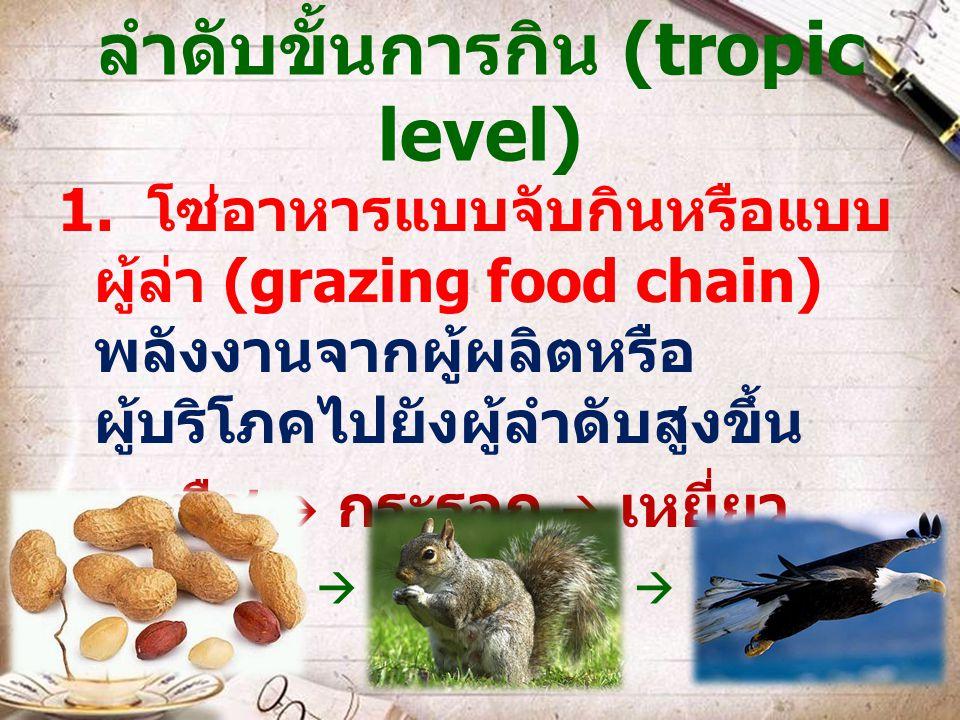ลำดับขั้นการกิน (tropic level)