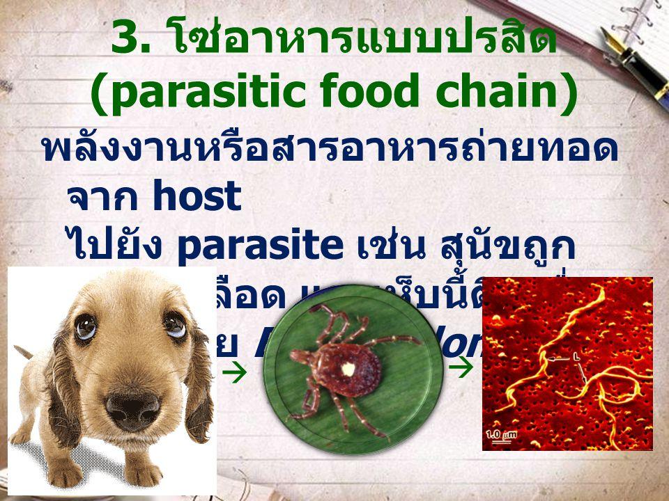 3. โซ่อาหารแบบปรสิต (parasitic food chain)