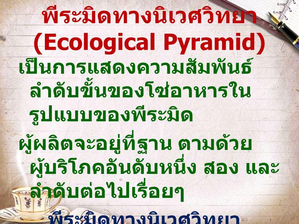 พีระมิดทางนิเวศวิทยา (Ecological Pyramid)