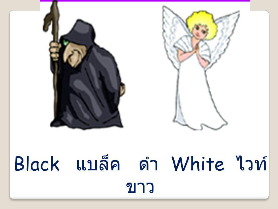 Black แบล็ค ดำ White ไวท์ ขาว