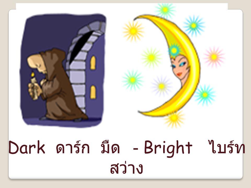 Dark ดาร์ก มืด - Bright ไบร์ท สว่าง