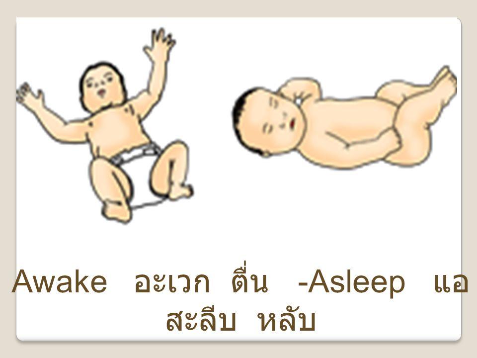 Awake อะเวก ตื่น -Asleep แอสะลีบ หลับ