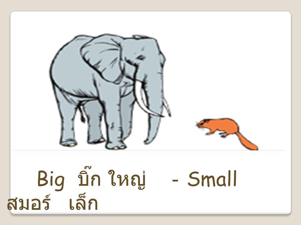 Big บิ๊ก ใหญ่ - Small สมอร์ เล็ก