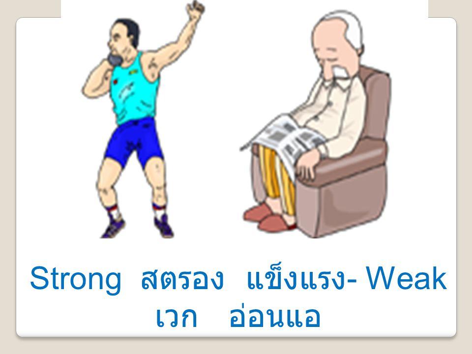 Strong สตรอง แข็งแรง- Weak เวก อ่อนแอ