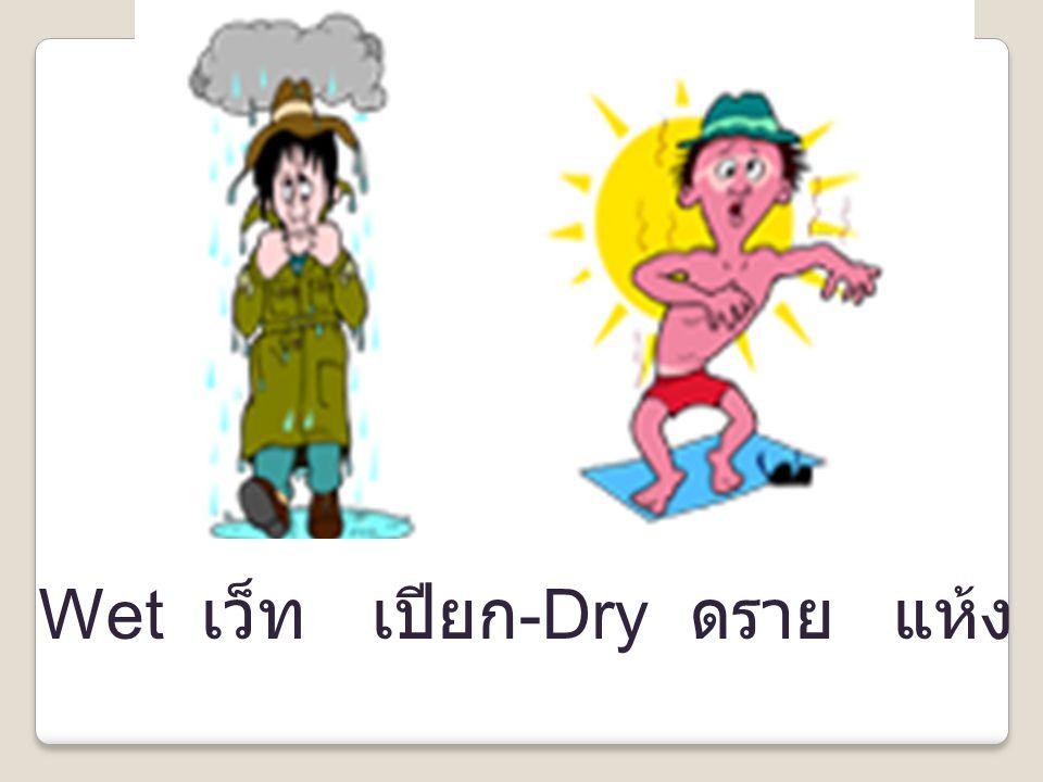 Wet เว็ท เปียก-Dry ดราย แห้ง