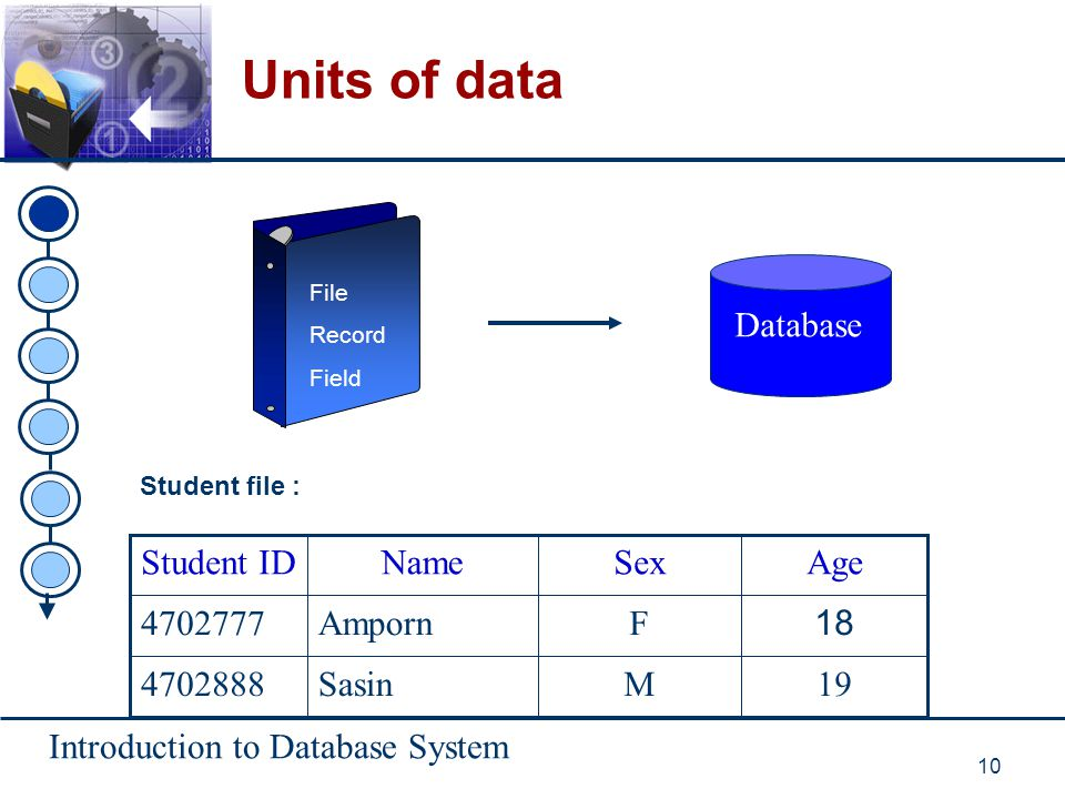 Units of data Database 19 M Sasin 4702888 18 F Amporn 4702777 Age Sex
