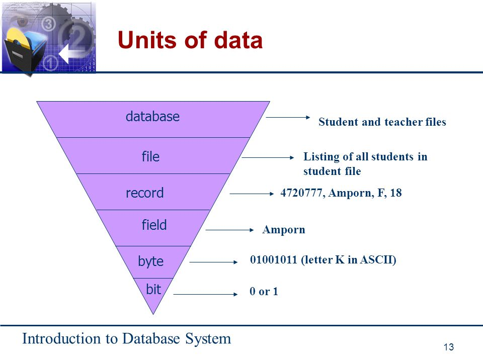 Units of data database file record field byte bit