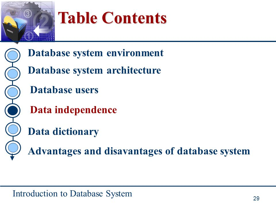 Table Contents Database system environment