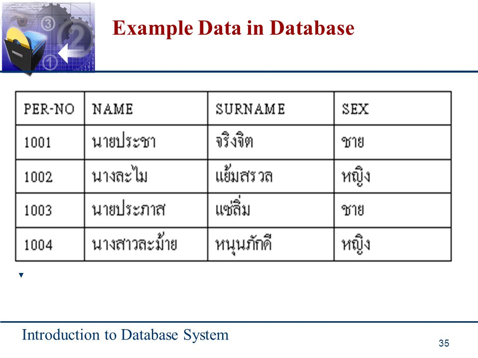Example Data in Database