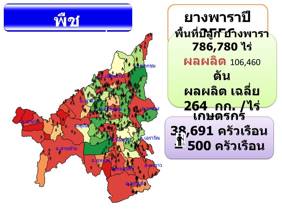 พื้นที่ปลูก ยางพารา 786,780 ไร่