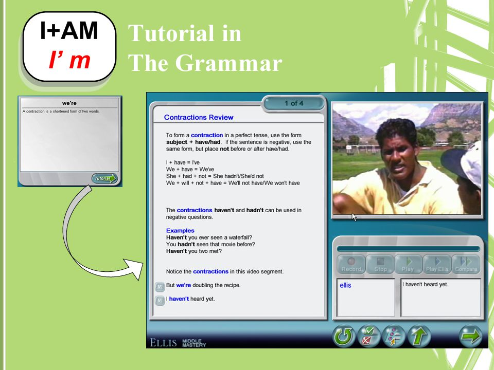 Tutorial in The Grammar
