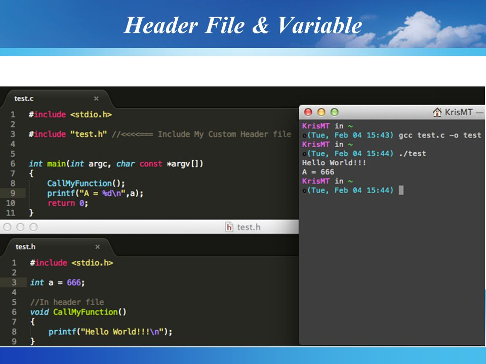 Header File & Variable