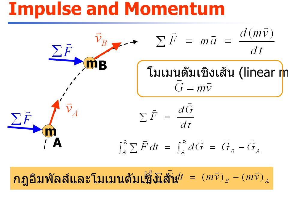 Impulse and Momentum m B โมเมนตัมเชิงเส้น (linear momentum) m A
