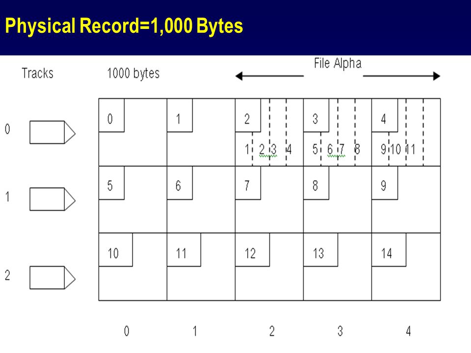 Physical Record=1,000 Bytes