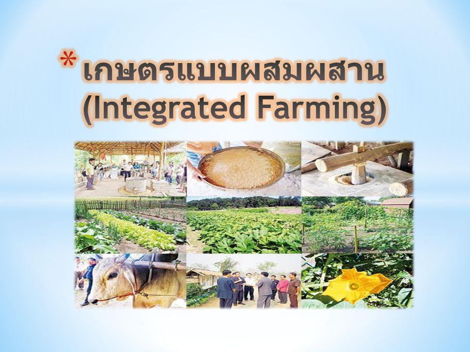เกษตรแบบผสมผสาน (Integrated Farming)