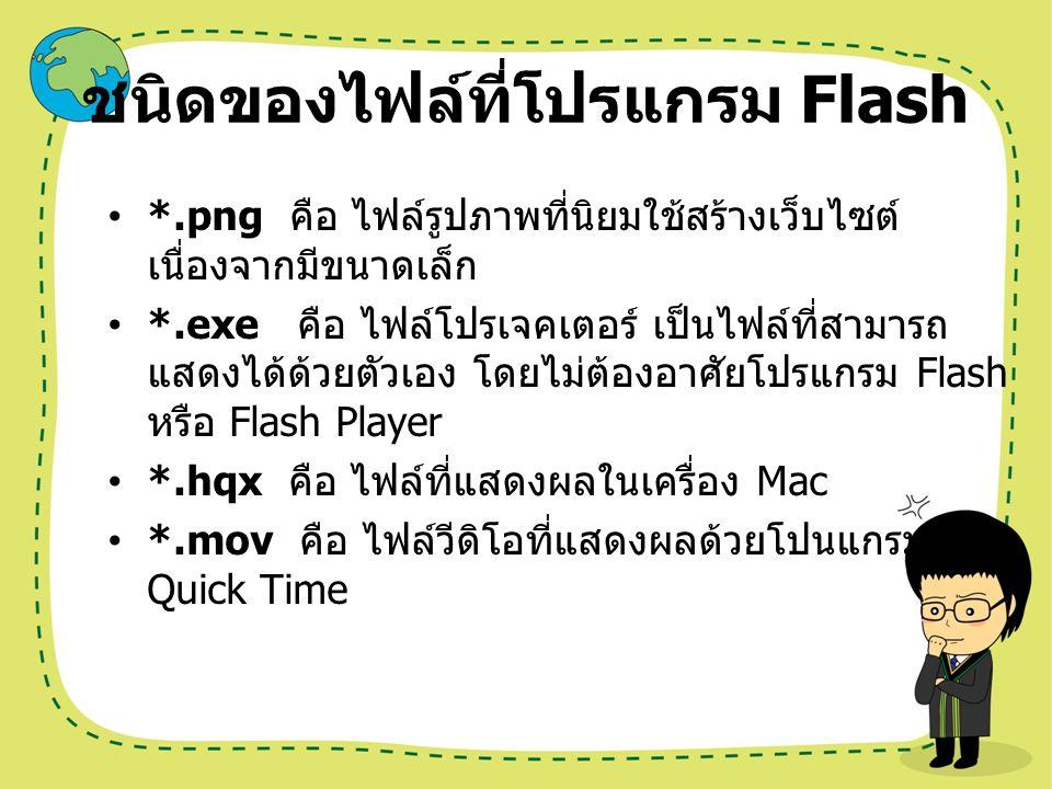 ชนิดของไฟล์ที่โปรแกรม Flash