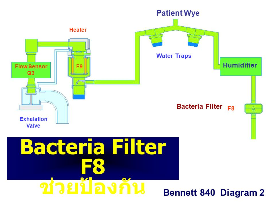 Bacteria Filter F8 ช่วยป้องกัน ………….