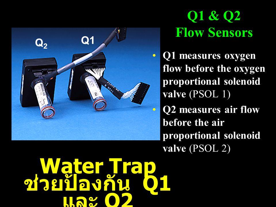 Water Trap ช่วยป้องกัน Q1 และ Q2