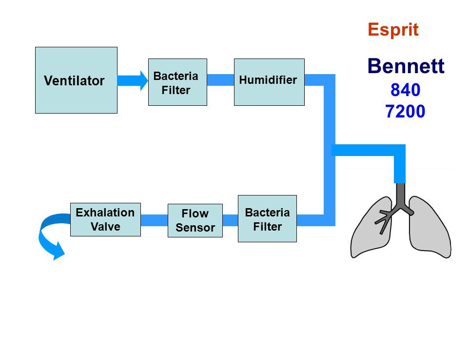 Bennett 840 7200 Esprit Ventilator Bacteria Filter Humidifier