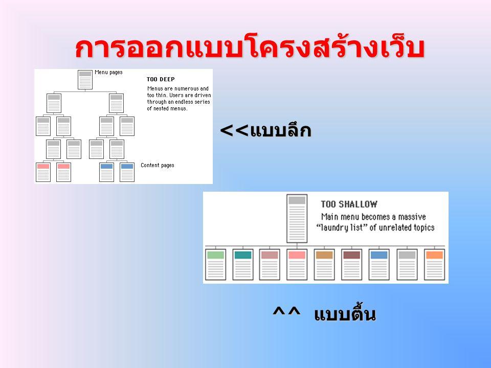 การออกแบบโครงสร้างเว็บ