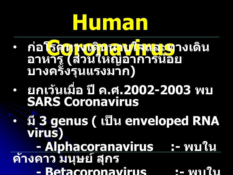 Human Coronavirus ก่อโรคทางเดินหายใจและทางเดินอาหาร (ส่วนใหญ่อาการน้อย บางครั้งรุนแรงมาก) ยกเว้นเมื่อ ปี ค.ศ.2002-2003 พบ SARS Coronavirus.