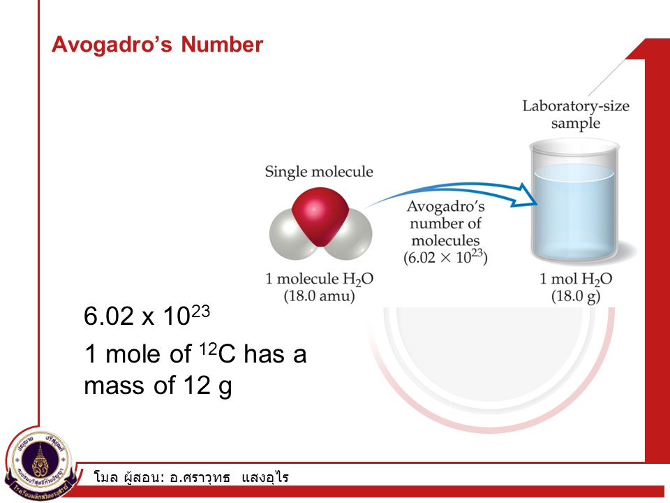 6.02 x 1023 1 mole of 12C has a mass of 12 g Avogadro's Number