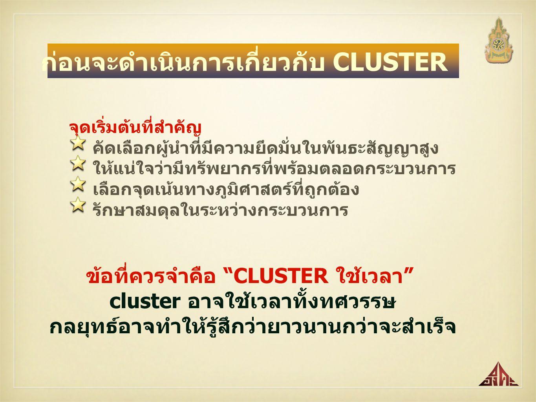 ก่อนจะดำเนินการเกี่ยวกับ CLUSTER