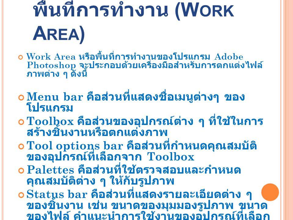 พื้นที่การทำงาน (Work Area)