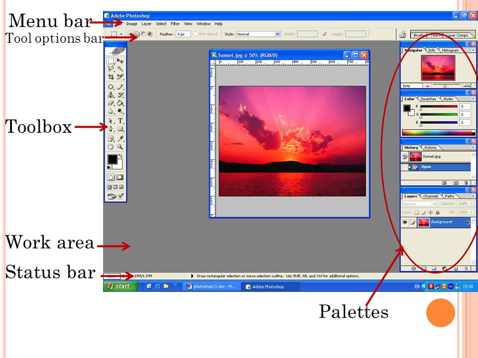Menu bar Tool options bar Toolbox Work area Status bar Palettes
