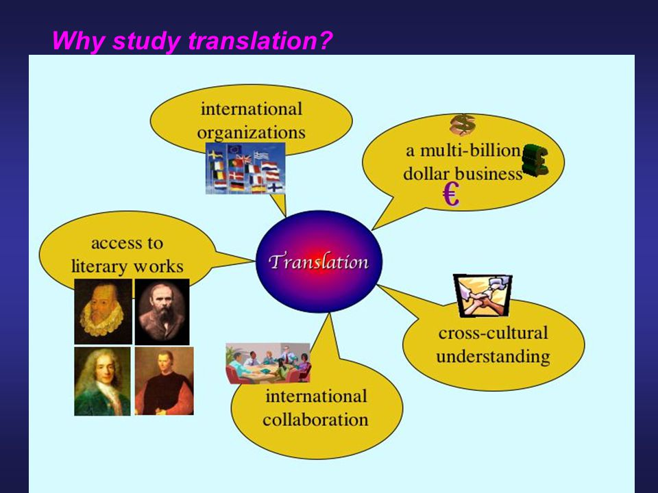 Why study translation