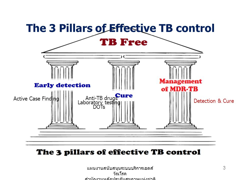 The 3 Pillars of Effective TB control