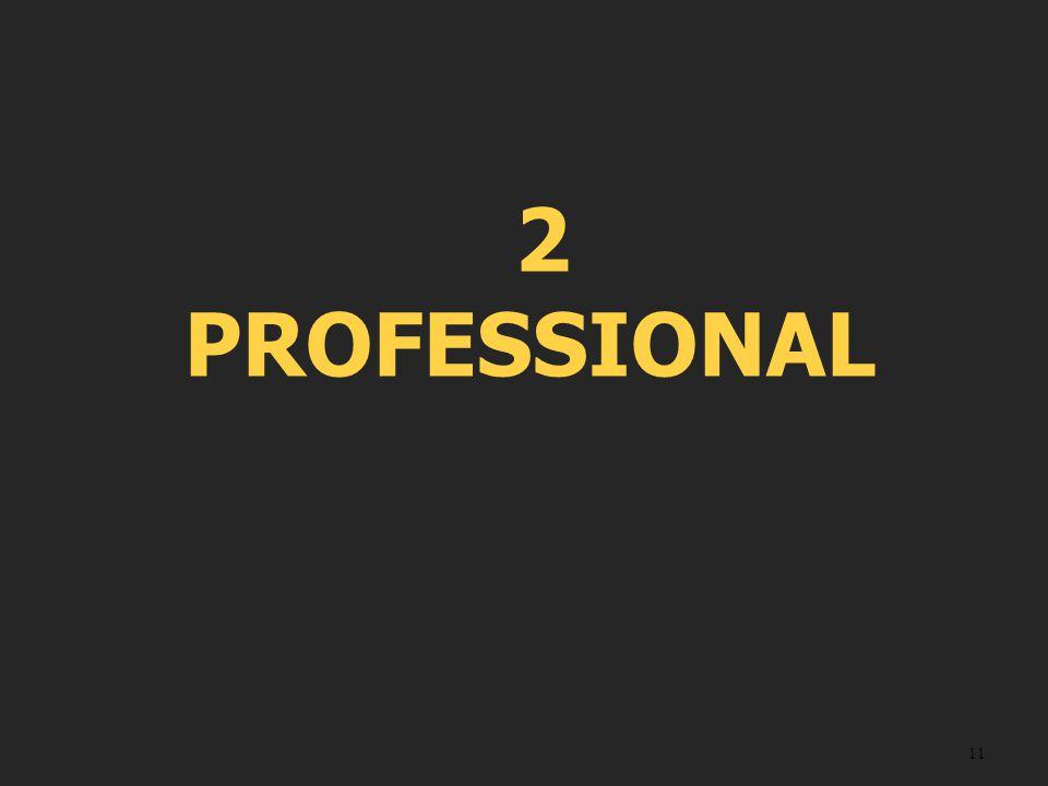 2 PROFESSIONAL