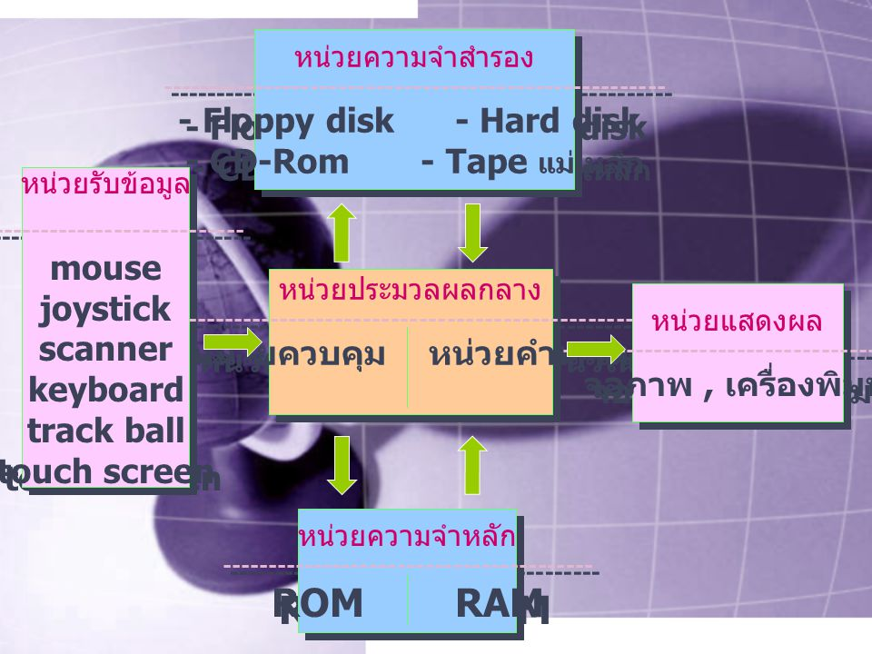 ROM RAM - Floppy disk - Hard disk - CD-Rom - Tape แม่เหล็ก mouse