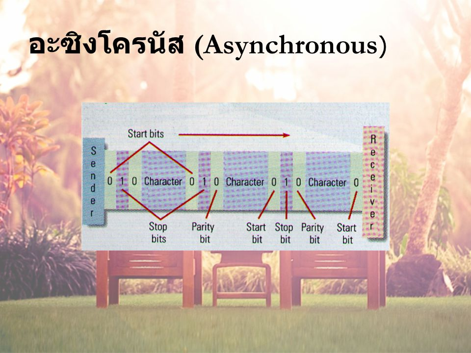 อะซิงโครนัส (Asynchronous)