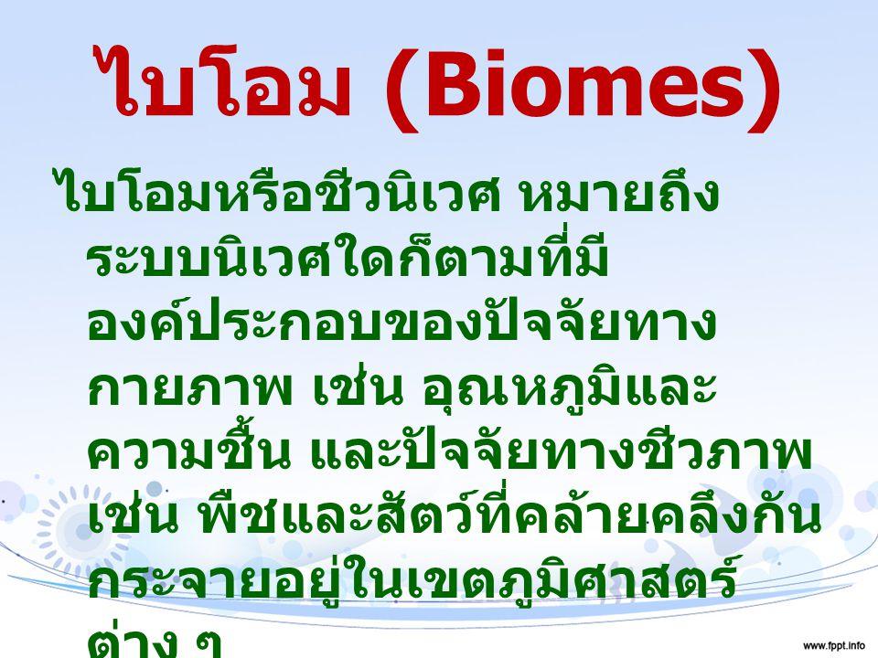 ไบโอม (Biomes)
