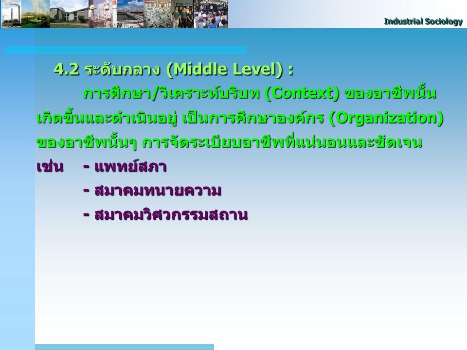 4.2 ระดับกลาง (Middle Level) :