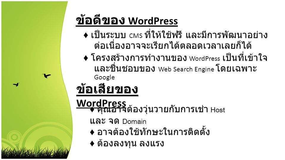 ข้อดีของ WordPress ข้อเสียของ WordPress