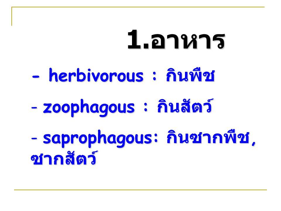 1.อาหาร - herbivorous : กินพืช zoophagous : กินสัตว์
