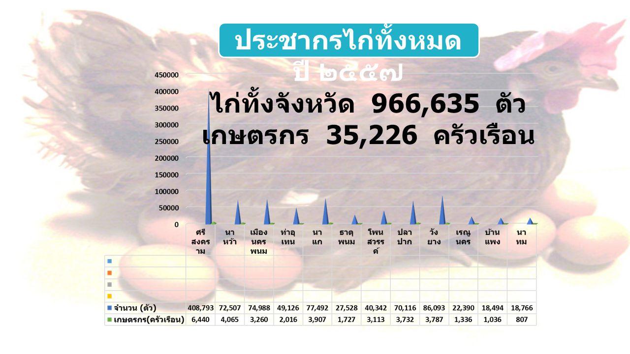 ไก่ทั้งจังหวัด 966,635 ตัว เกษตรกร 35,226 ครัวเรือน