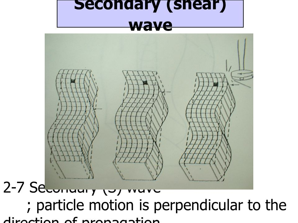 Secondary (shear) wave