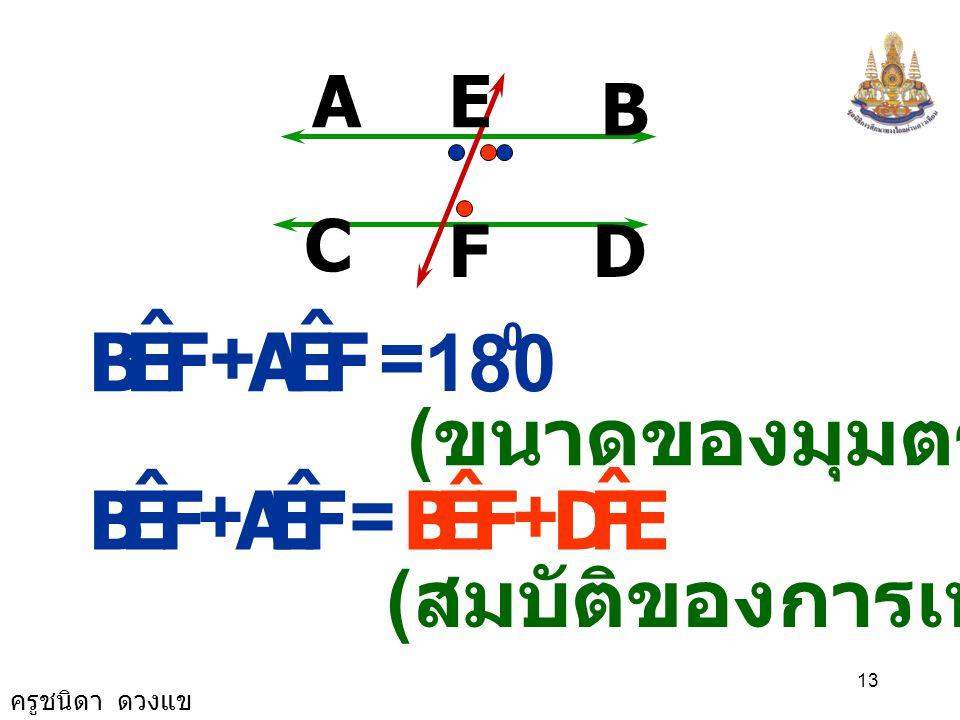 F E B ˆ A F E B ˆ A D + = 180 (ขนาดของมุมตรง) + =
