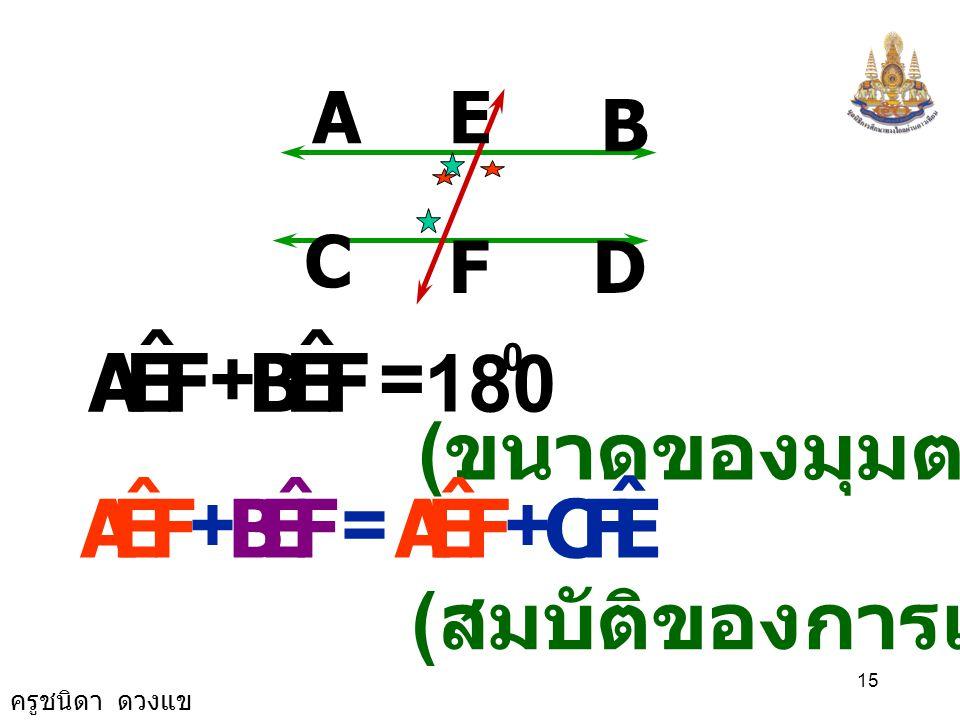 F E A ˆ B F E A ˆ B C + = 180 (ขนาดของมุมตรง) + =