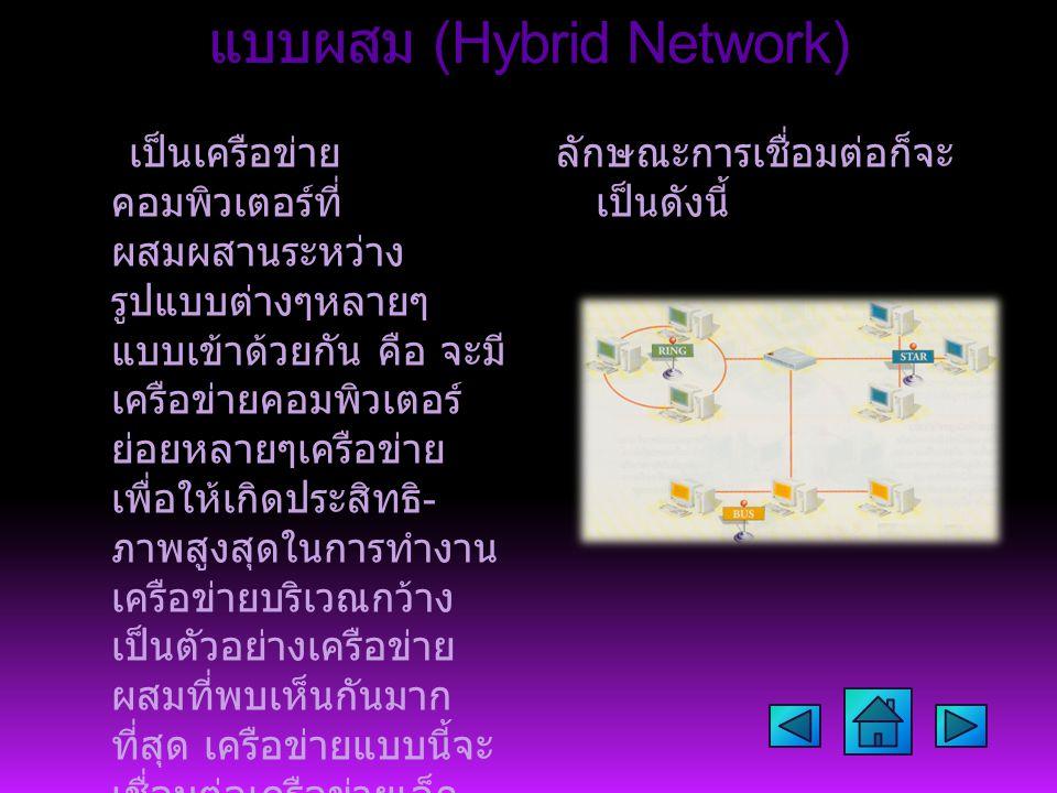 แบบผสม (Hybrid Network)
