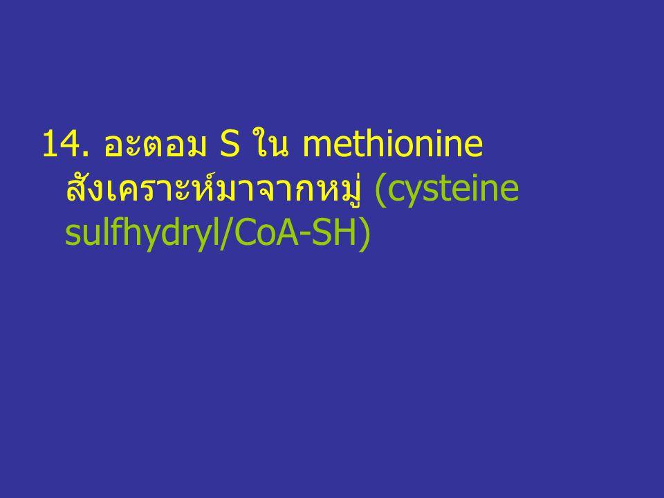 14. อะตอม S ใน methionine สังเคราะห์มาจากหมู่ (cysteine sulfhydryl/CoA-SH)