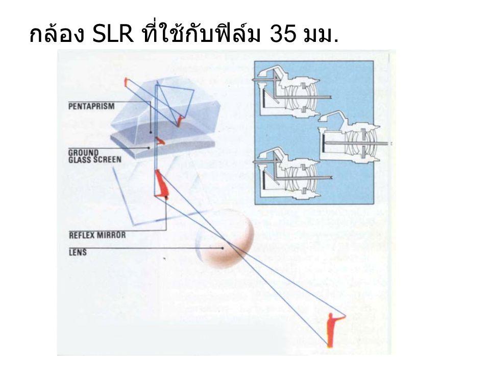 กล้อง SLR ที่ใช้กับฟิล์ม 35 มม.