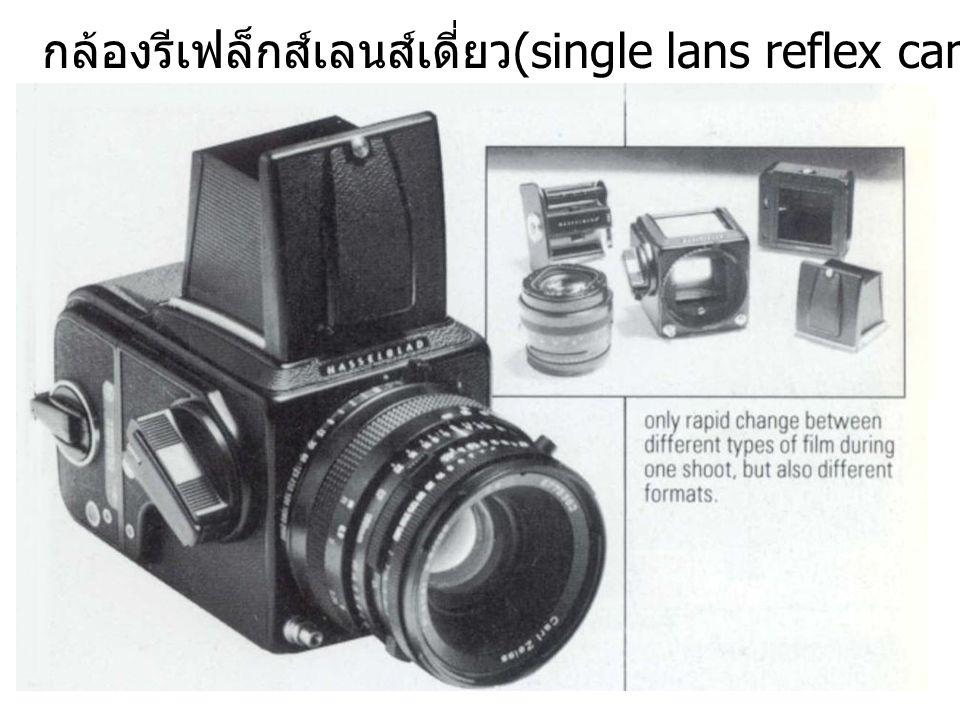 กล้องรีเฟล็กส์เลนส์เดี่ยว(single lans reflex camera, SLR)