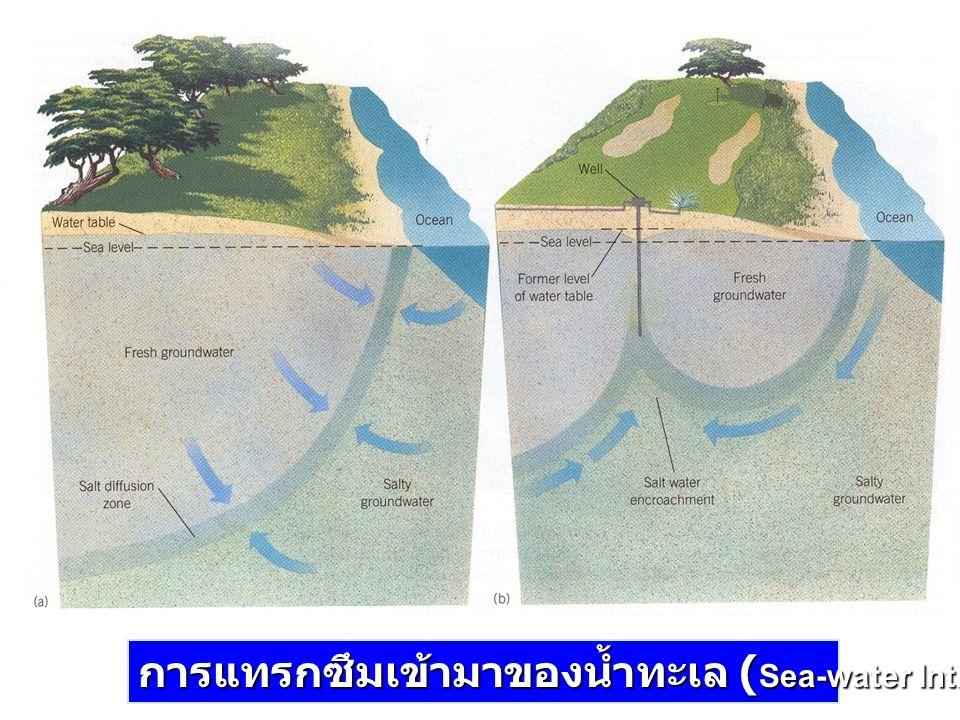 การแทรกซึมเข้ามาของน้ำทะเล (Sea-water Intrusion)