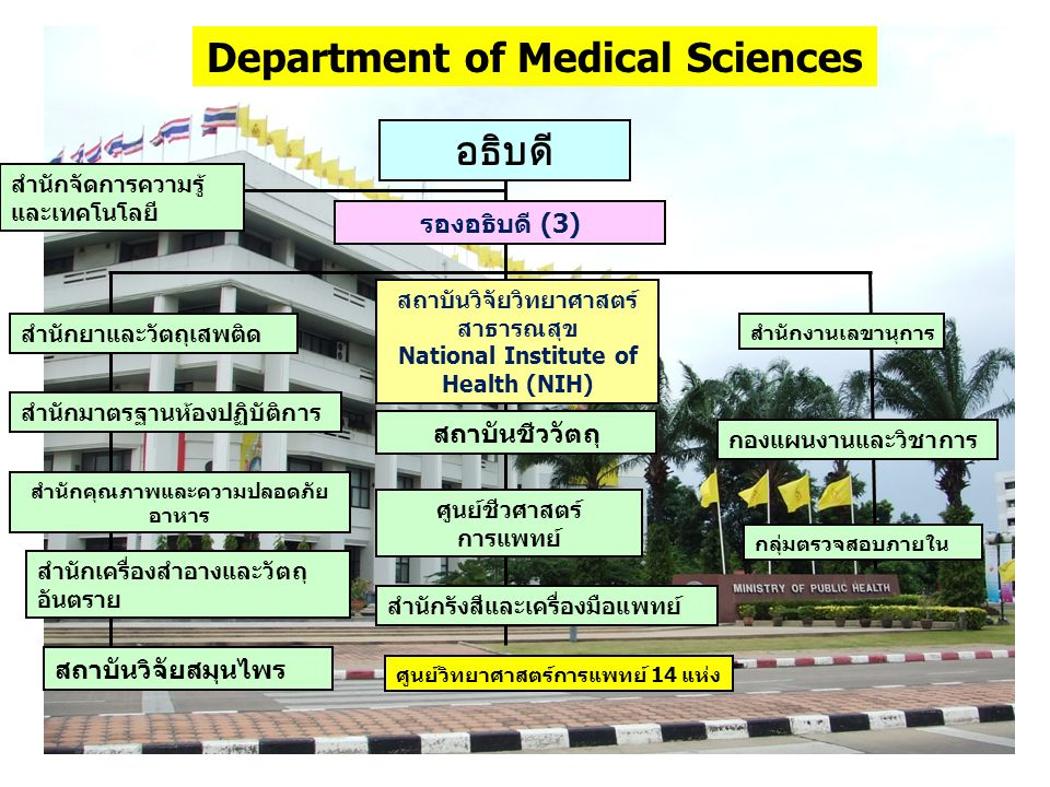 Department of Medical Sciences